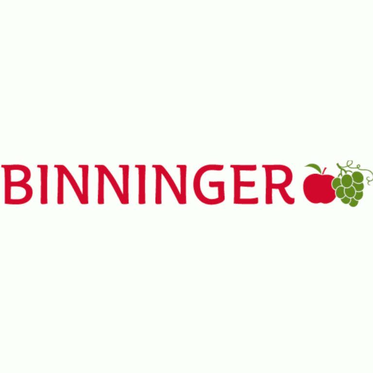 Logo Binninger