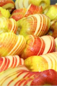 Broeg Trockenfruechte Produktion Apfelchips Apfelscheiben 1ig