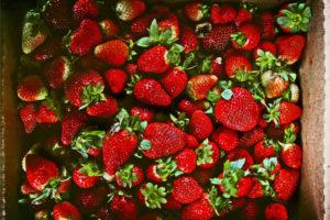 Bachs Hofladen Erdbeeren 1